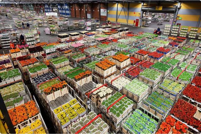 На складском рынке вдвое увеличился средний размер сделки